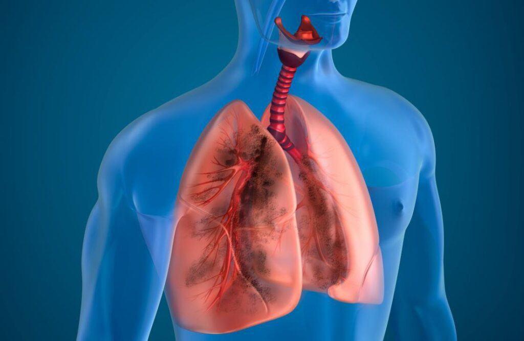 Hô hấp có vai trò quan trọng như thế nào với cơ thể sống