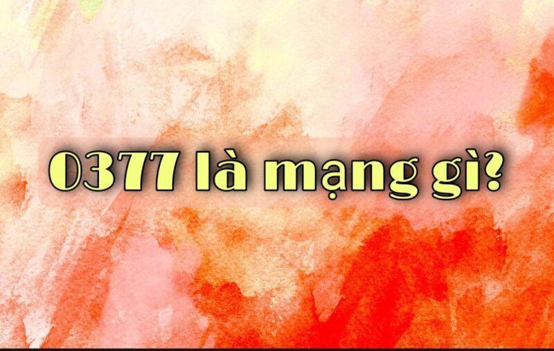 037 la mang gi 3
