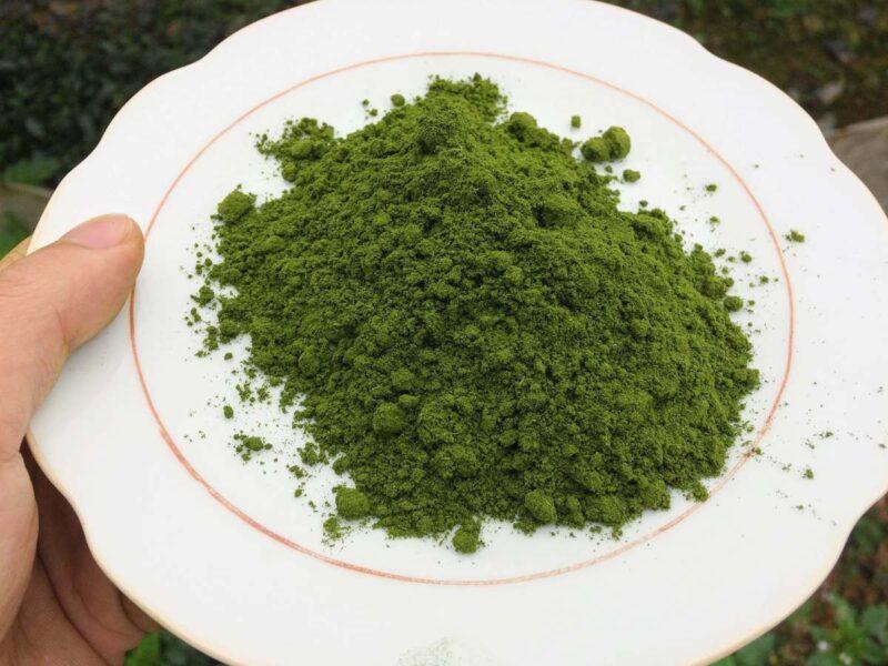 bột trà xanh thái nguyên mua ở đâu