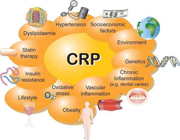 CRP là gì?