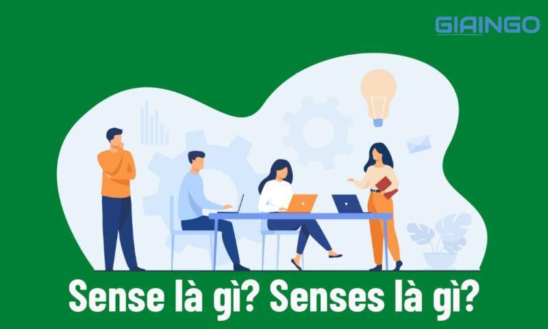 Sense là gì? Senses là gì?