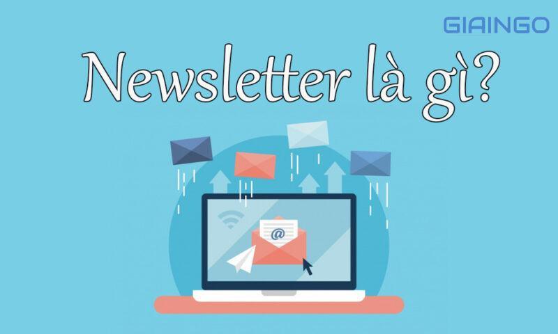 Newsletter là gì?