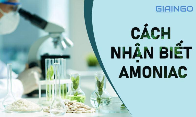 Cách nhận biết Amoniac
