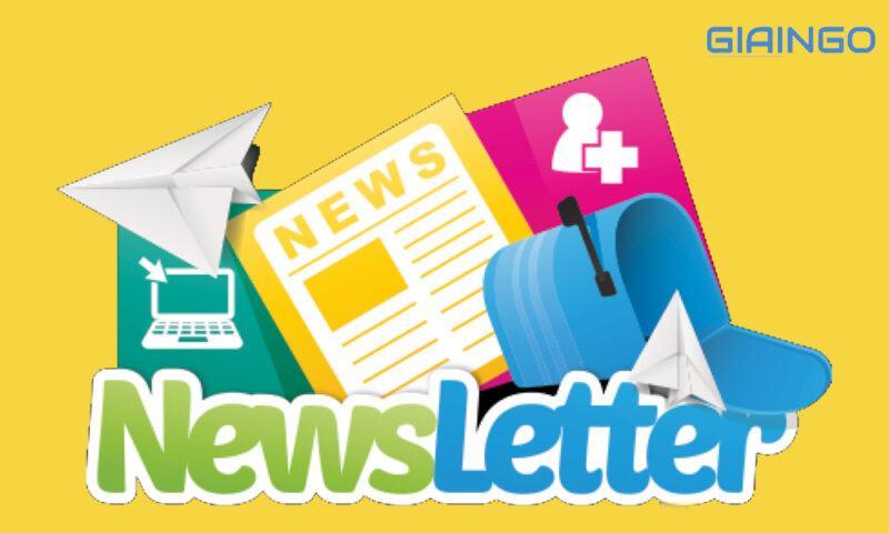Các yếu tố tạo nên một newsletter là gì?