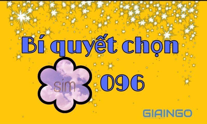 096 là mạng gì?