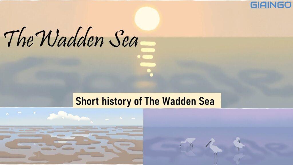 Biển Wadden là gì?