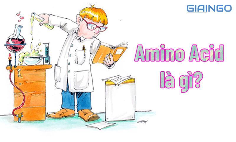 Amino Acid là gì?