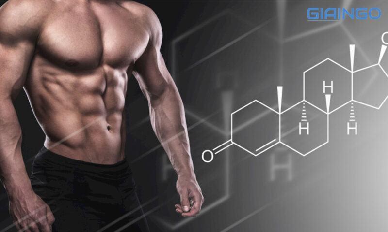 Amino Acid có giúp giảm mỡ không?
