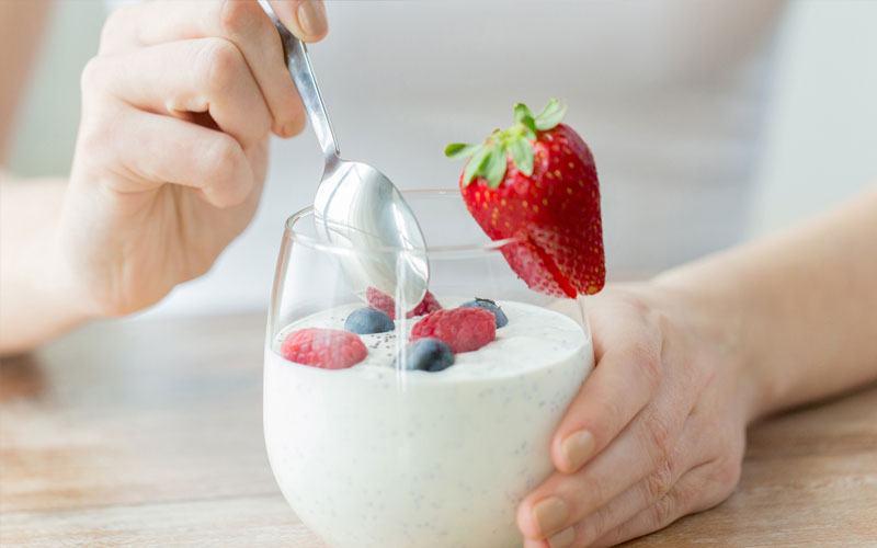 Vì sao trong sữa chua hầu như không có vi sinh vật gây bệnh?