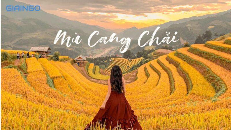 https://giaingo.info/mu-cang-chai-o-dau/