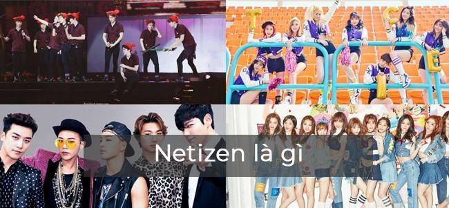 Netizen là gì?