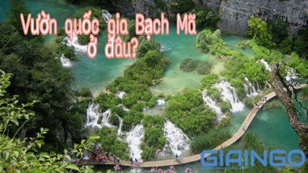 Vườn quốc gia Bạch Mã ở đâu?