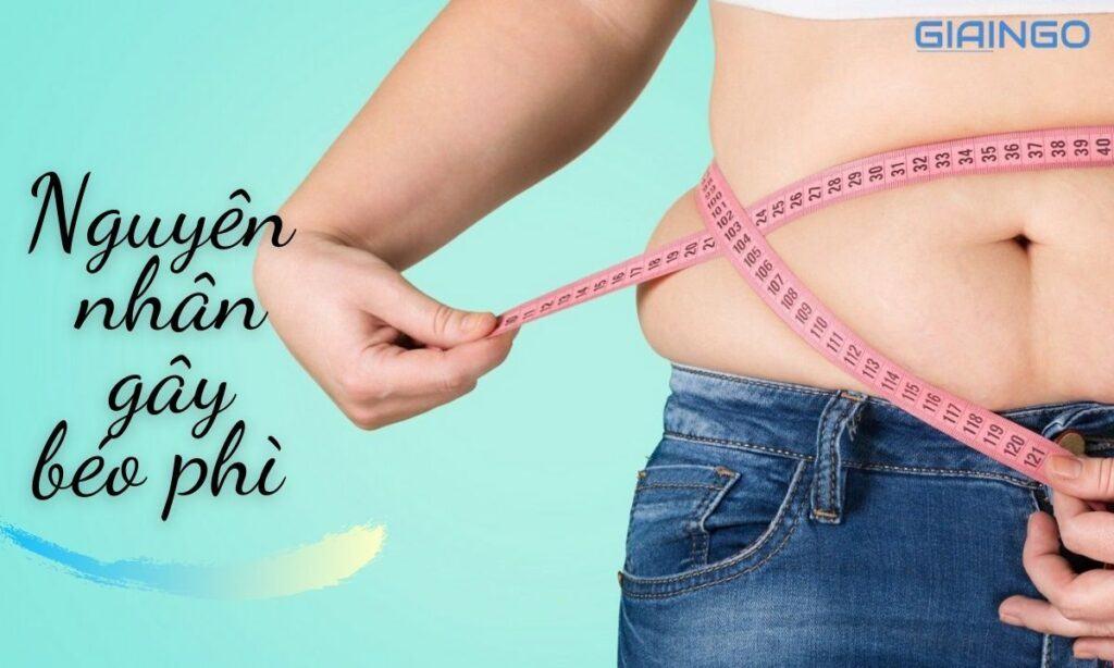 Nguyên nhân gây béo phì là gì?