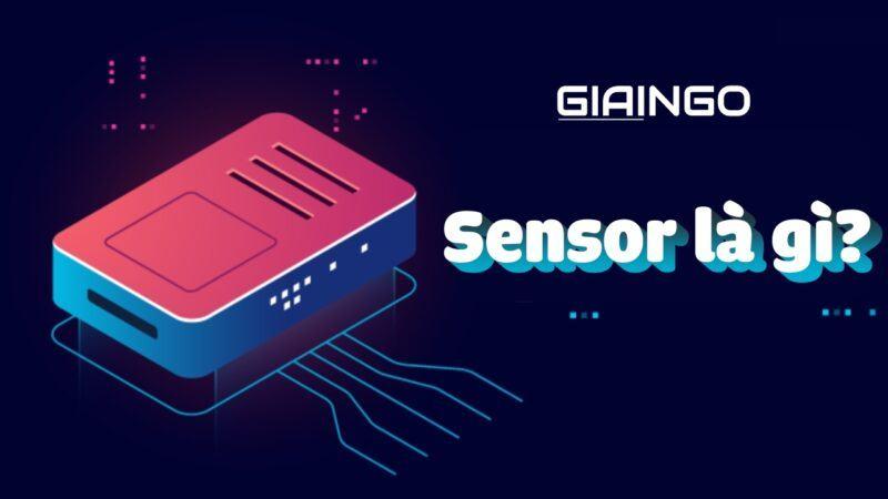https://giaingo.info/sensor-la-gi/