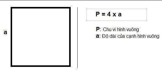 Square là gì