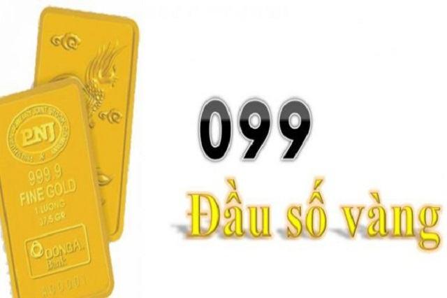 099 là mạng gì?