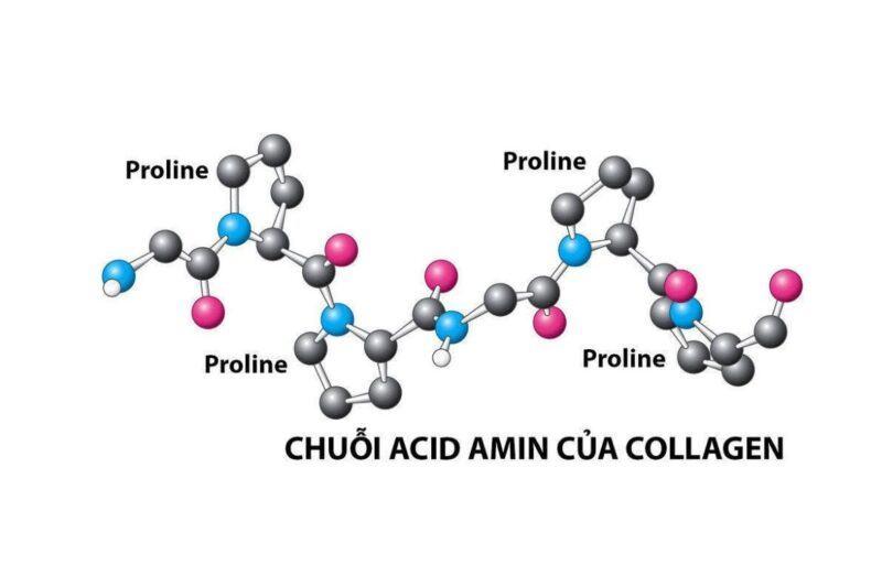 Collagen có tác dụng gì?