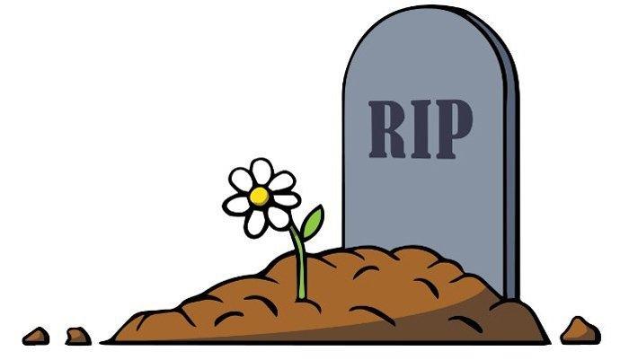 RIP là gì