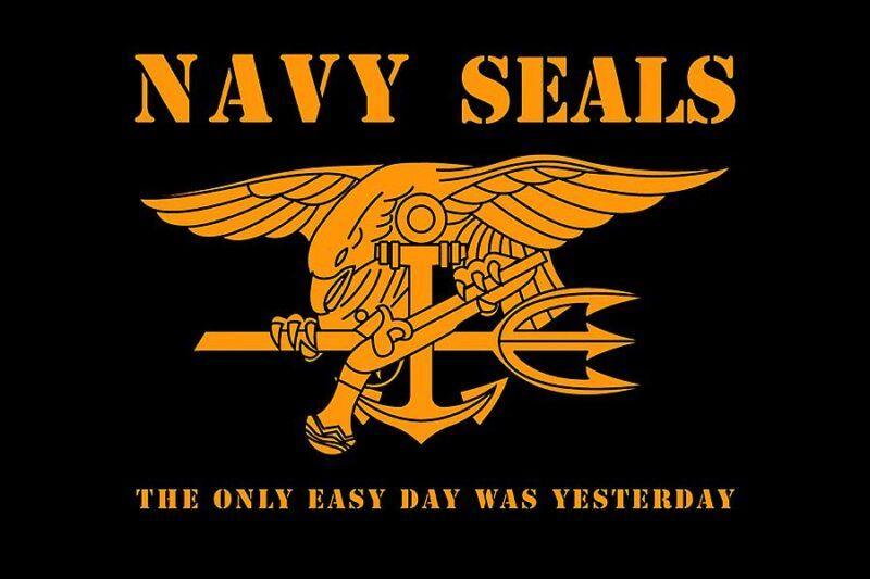 Seal là gì?