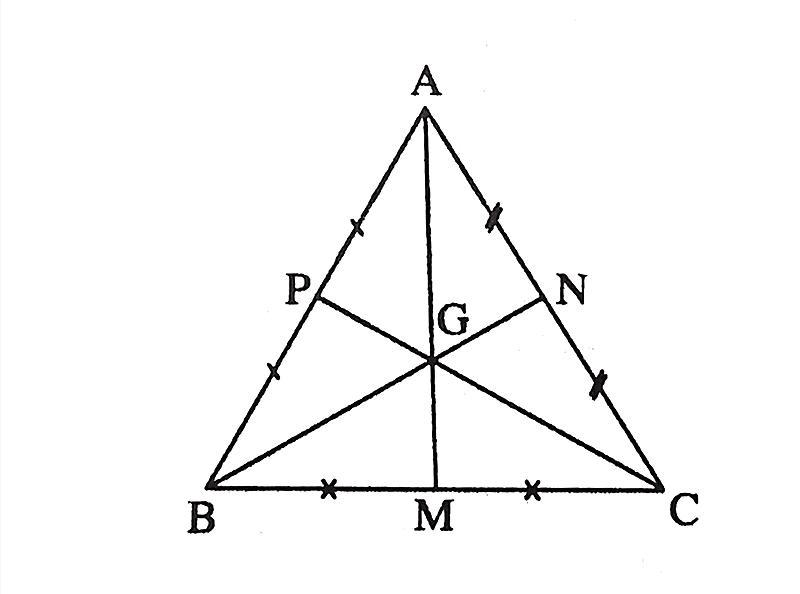 Tính chất trọng tâm tam giác?