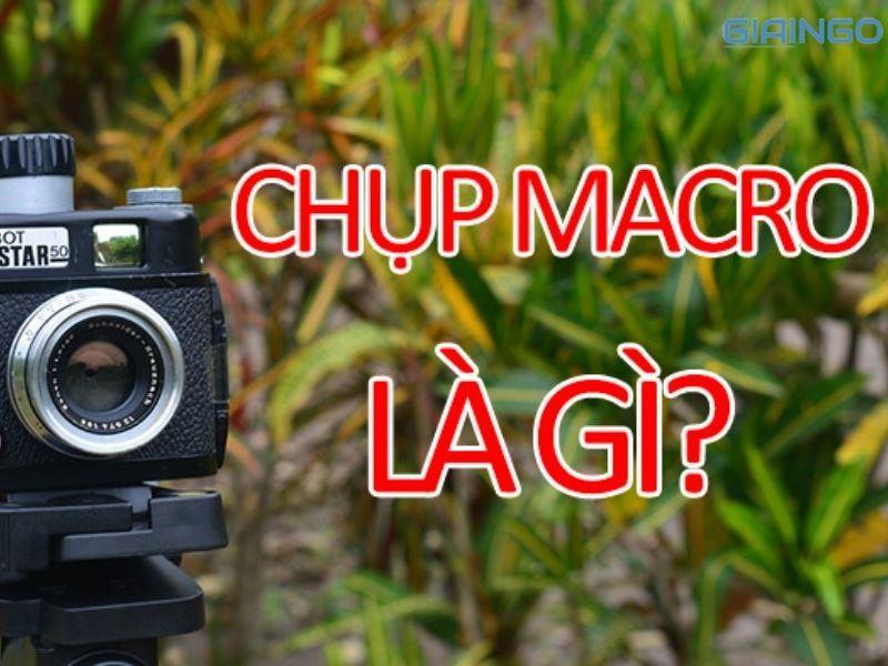 Macro là gì trong chụp ảnh?