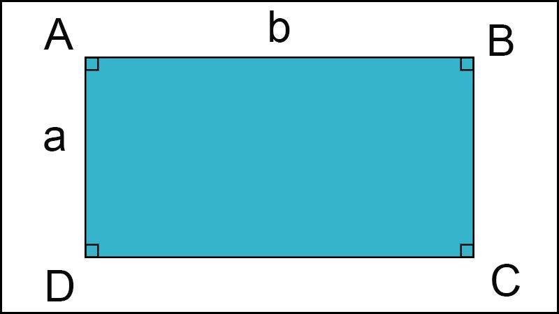 Tính chất hình chữ nhật