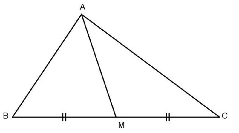 tính chất đường trung tuyến
