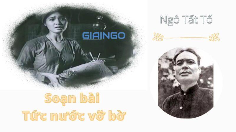 https://giaingo.info/soan-bai-tuc-nuoc-vo-bo/